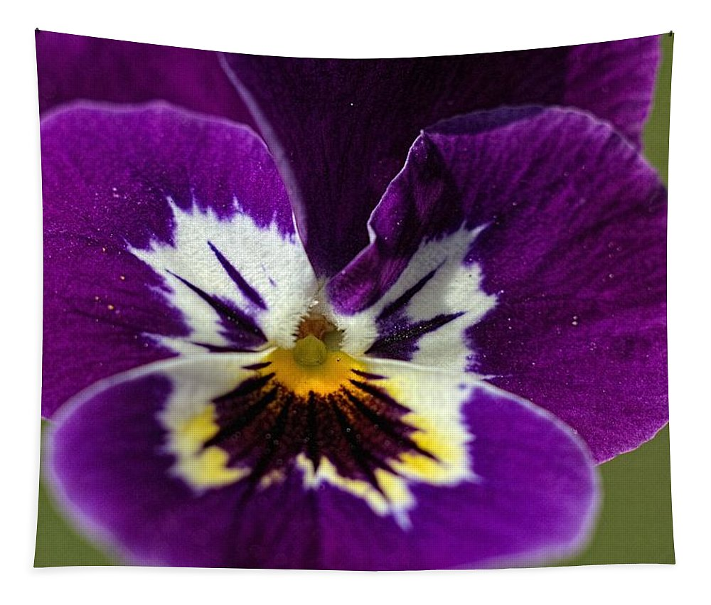 Macro Tapestry featuring the photograph Violet Macro by Bonfire Photography