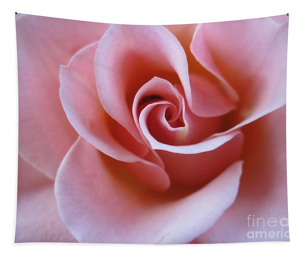 Floral Tapestry featuring the photograph Vivacious Pink Rose 4 by Tara Shalton