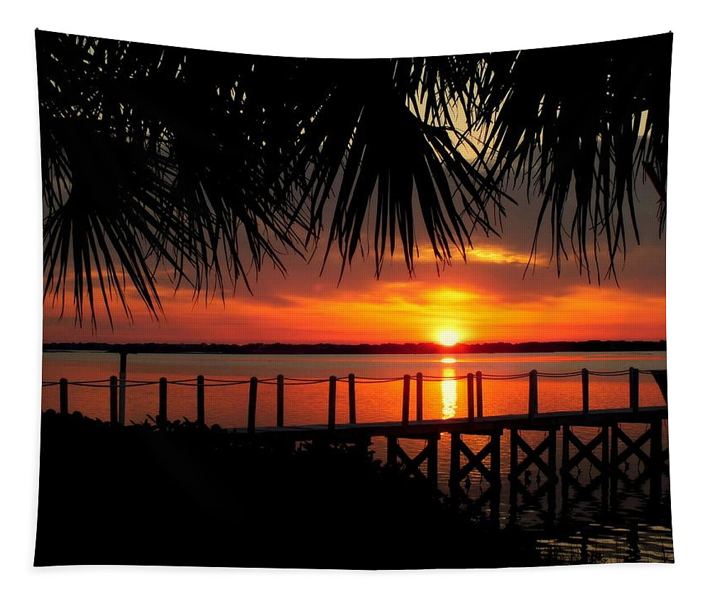 Tropical Tapestry featuring the photograph Waiting On The Sun by Karen Wiles