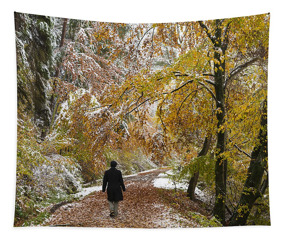 Fall Tapestry featuring the photograph Walking Into Winter - Beautiful Autumnal Trees And The First Snow Of The Year by Matthias Hauser