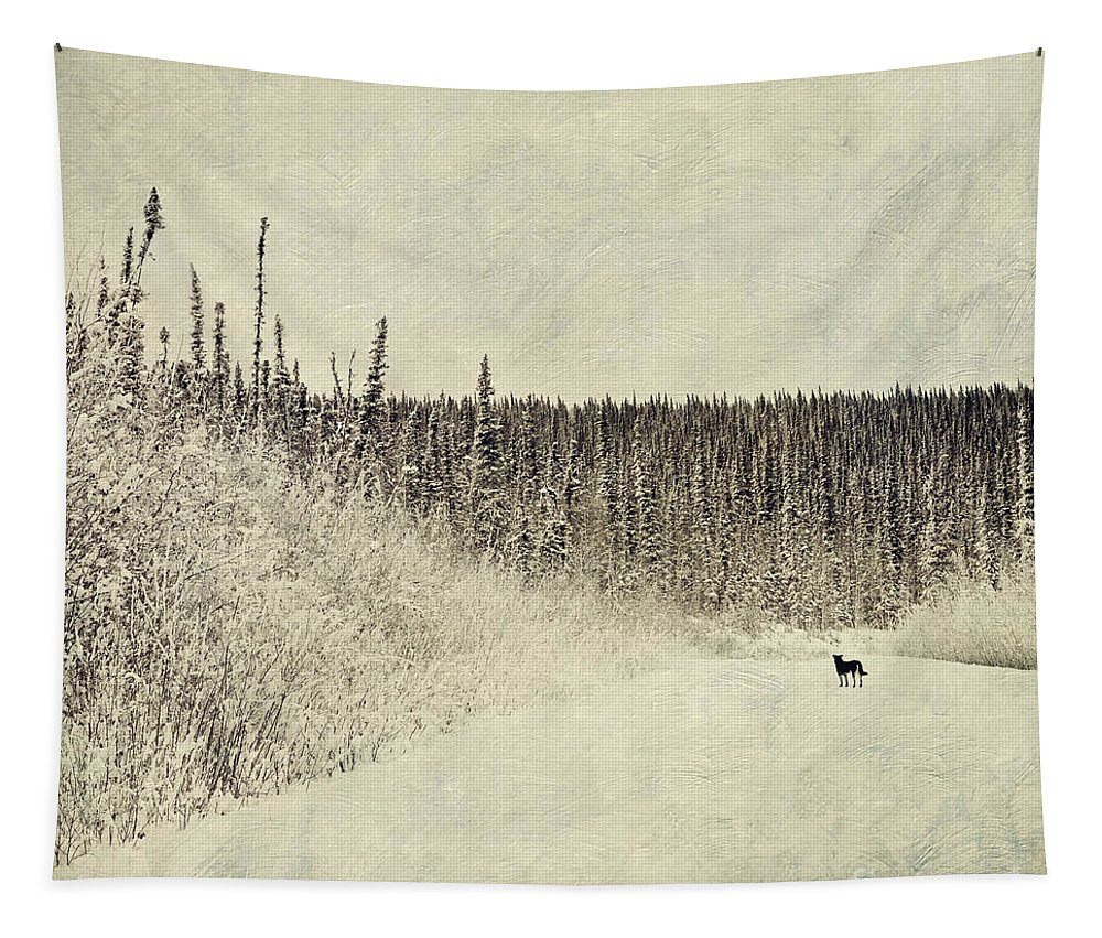 Dog Tapestry featuring the photograph Walking Luna by Priska Wettstein