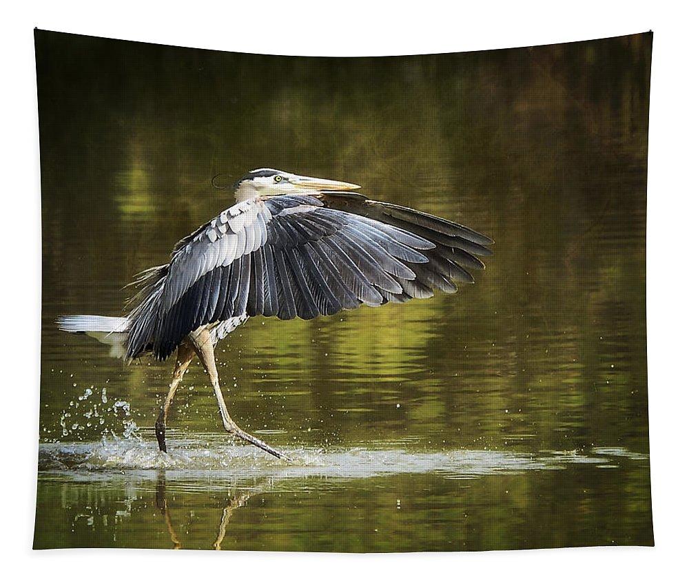Great Blue Heron Tapestry featuring the photograph Walking On Water  by Saija Lehtonen