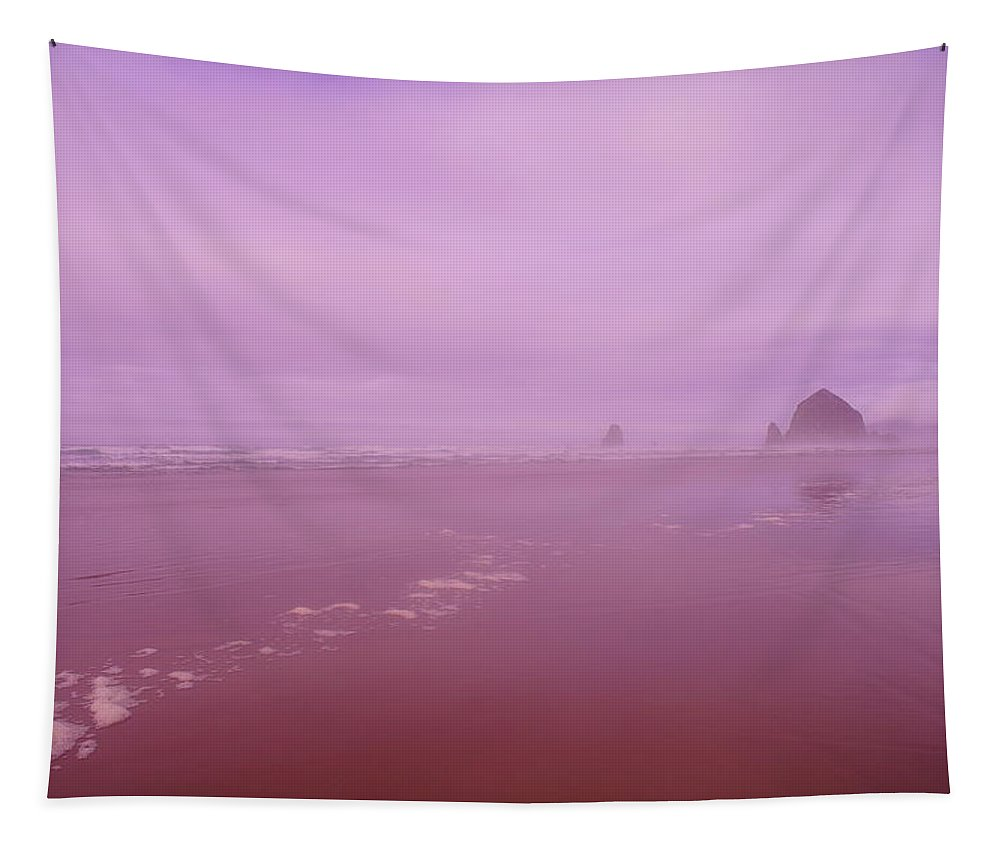 Beach Tapestry featuring the photograph Walking The Beach by Jeff Swan