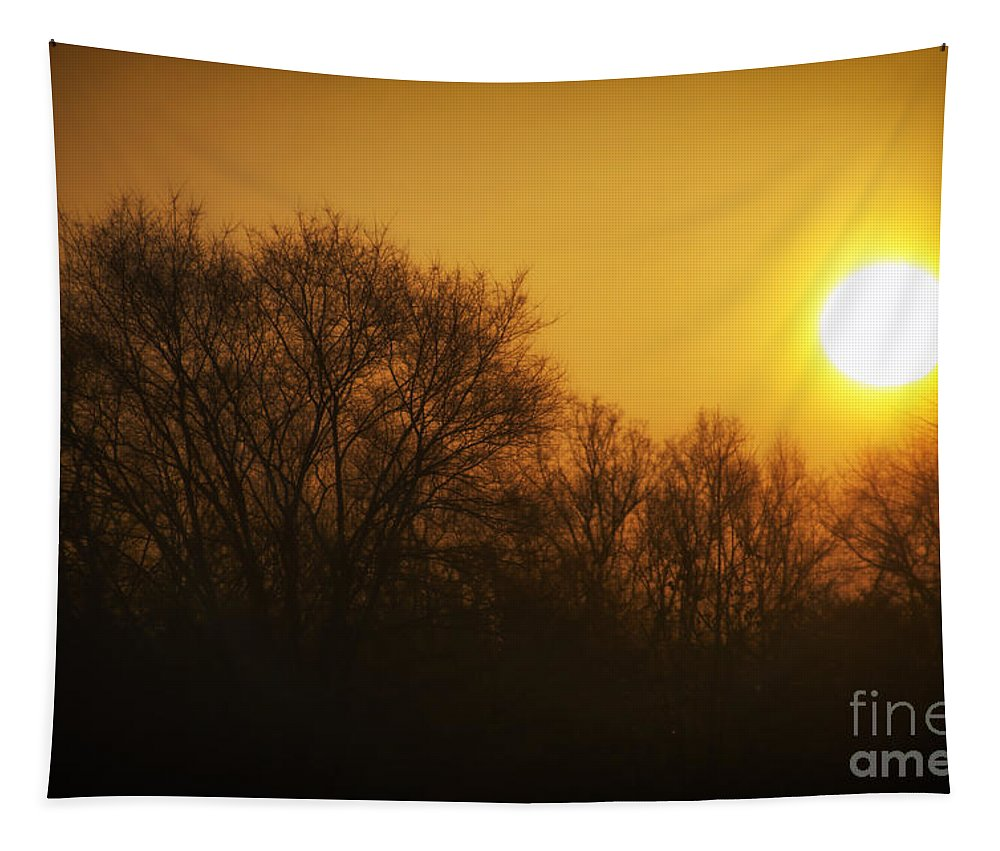 Sun Tapestry featuring the photograph Warm Glow Of The Morning Sunrise by Thomas Woolworth