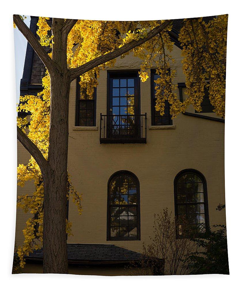 Washington Facades Tapestry featuring the photograph Washington D C Facades - Dupont Circle Neighborhood In Yellow by Georgia Mizuleva