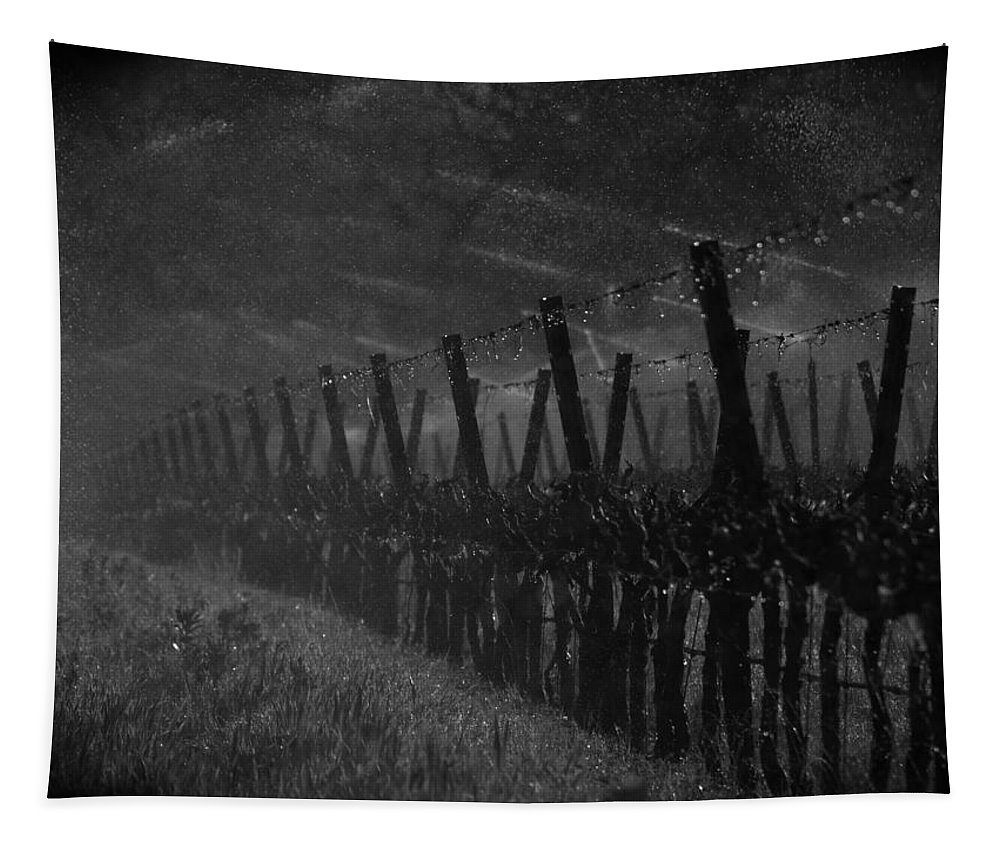 Winery Tapestry featuring the photograph Water Into Wine by Bill Gallagher