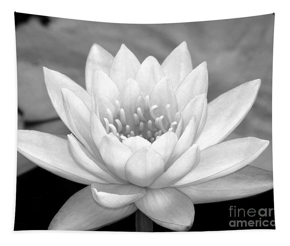 Landscape Tapestry featuring the photograph Water Lily In Black And White by Sabrina L Ryan