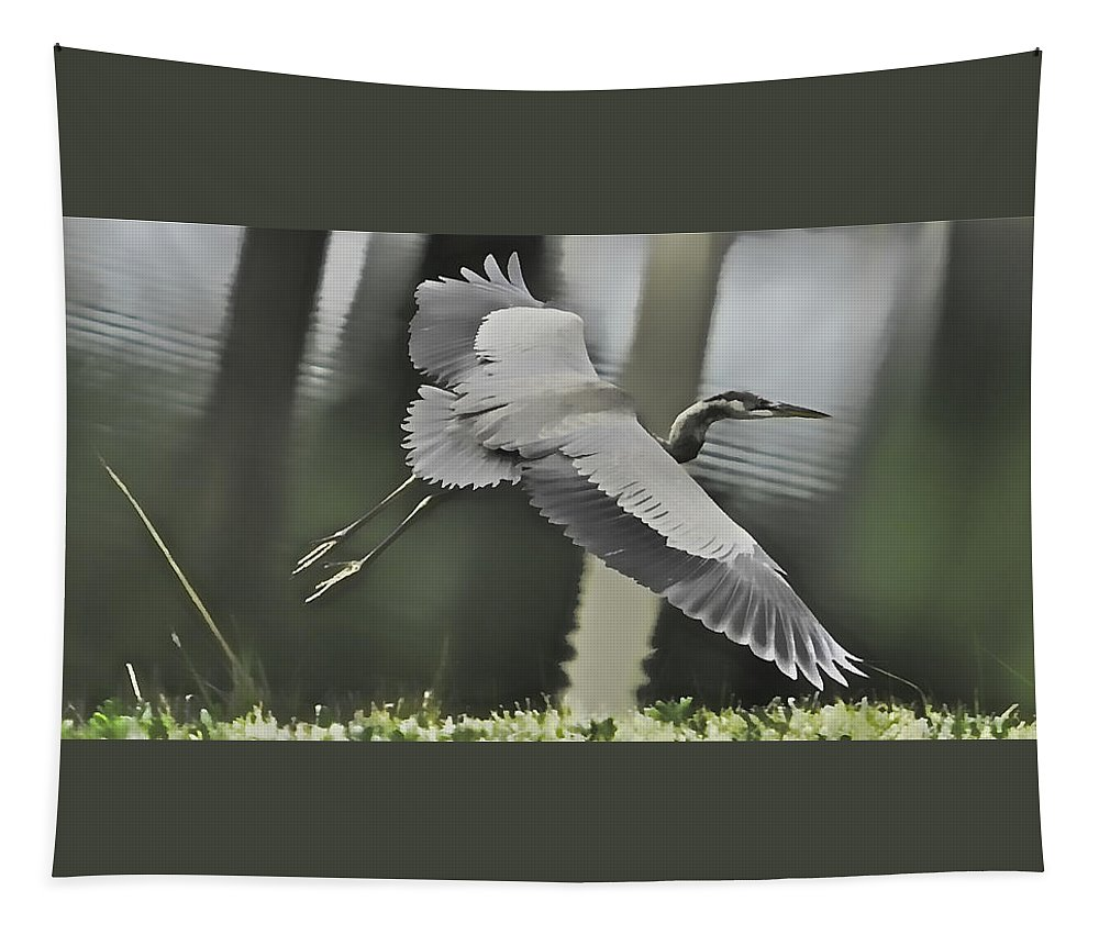 Bird Tapestry featuring the photograph Waterbird Flying by Alice Gipson