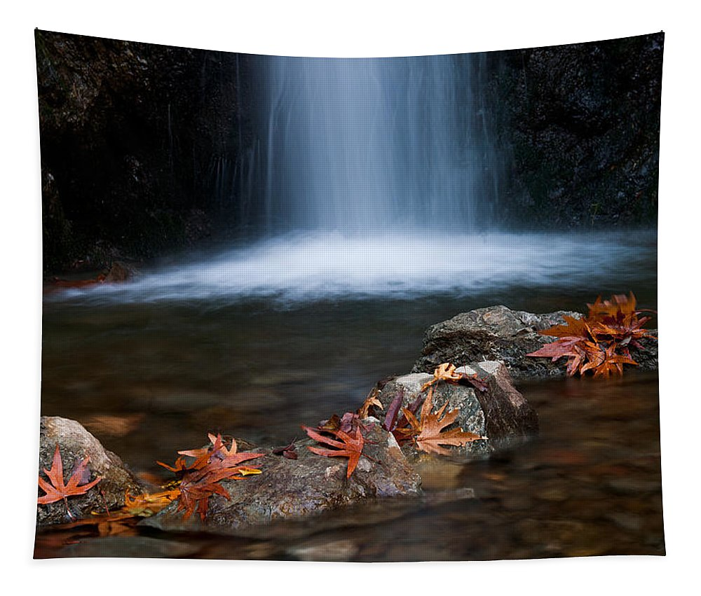 Waterfalls Tapestry featuring the photograph Waterfall And Leaves In Autumn by Michalakis Ppalis