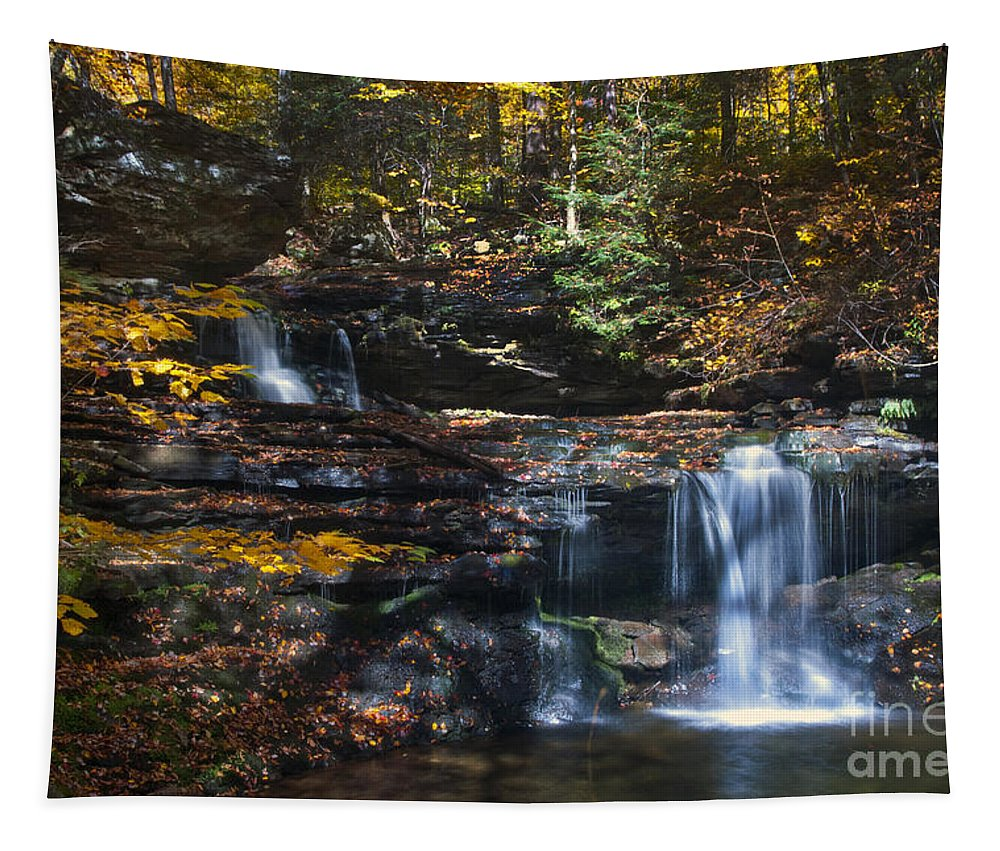 Ricketts Glen Tapestry featuring the photograph Waterfalls by Paul W Faust - Impressions of Light