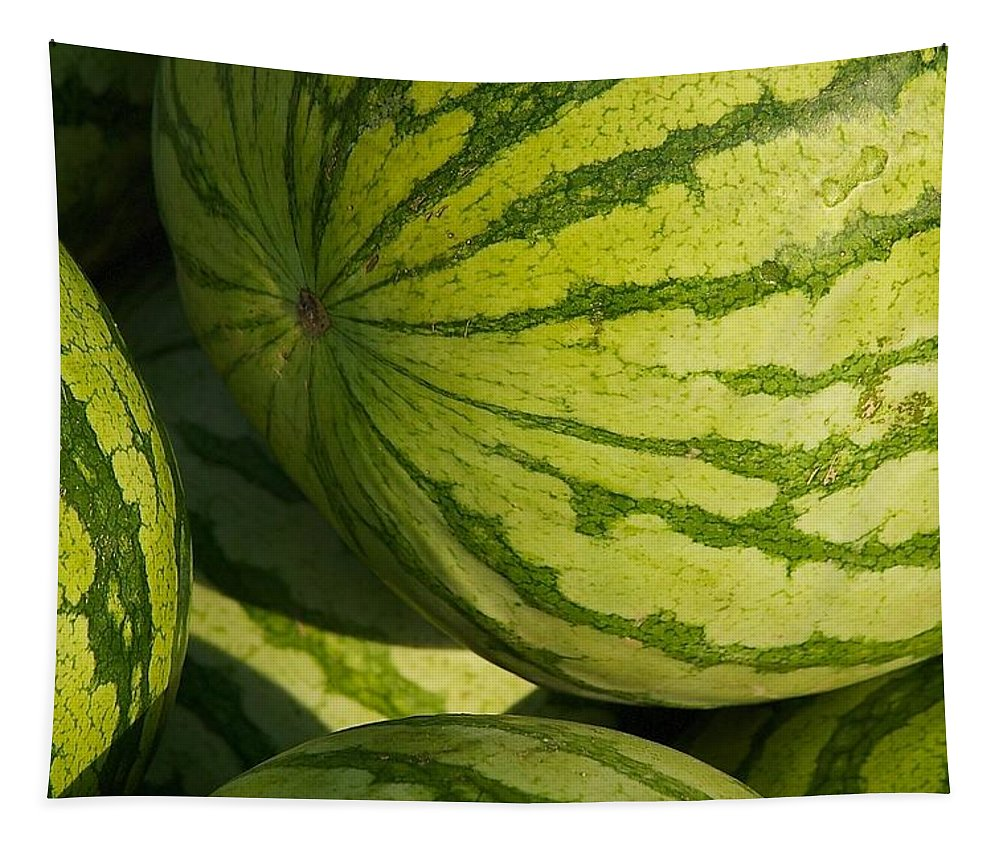 Watermelon Tapestry featuring the photograph Watermelons by Stuart Litoff