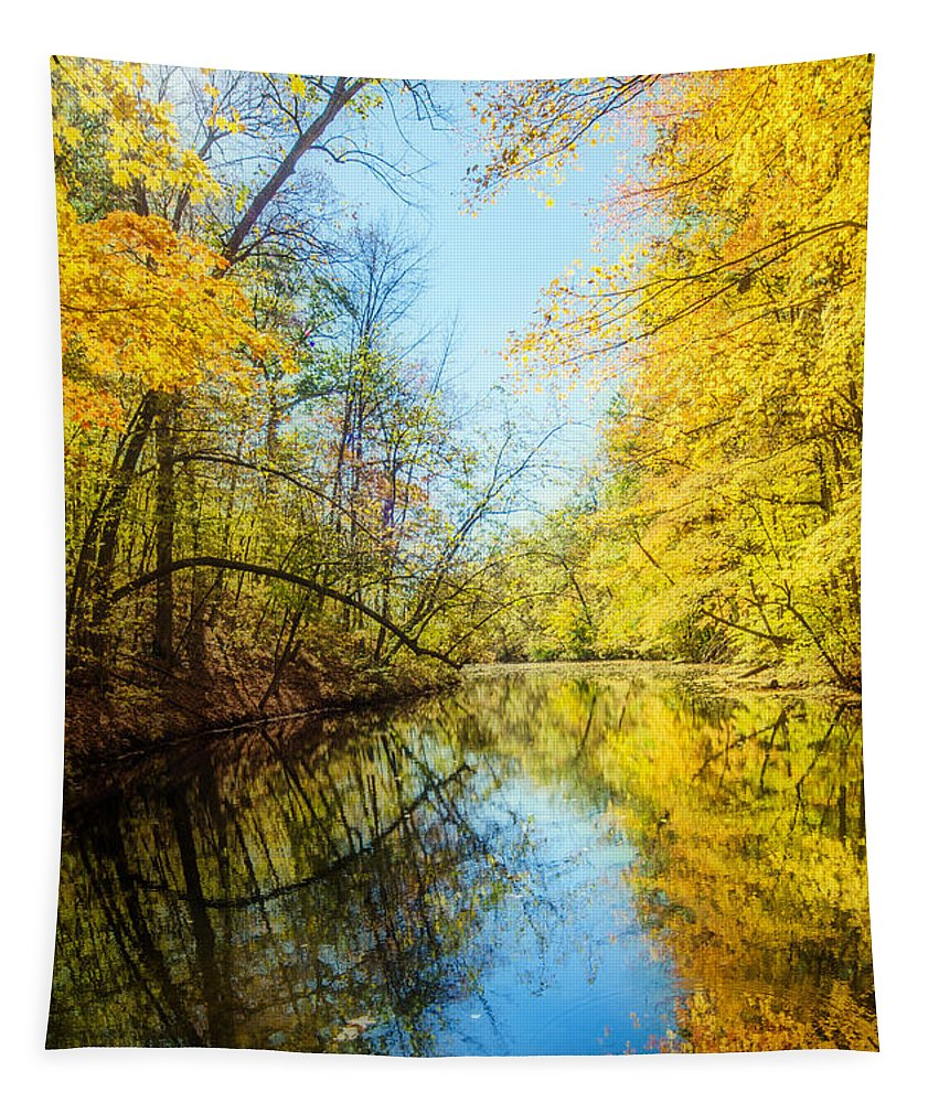 Fall Tapestry featuring the photograph Waxen Autumn 1 by Susan McMenamin