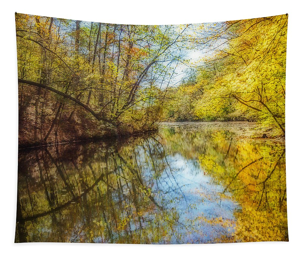 Fall Tapestry featuring the photograph Waxen Autumn 2 by Susan McMenamin