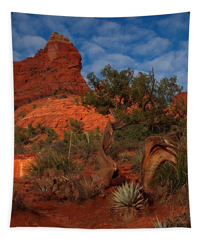 Jim Tapestry featuring the photograph Weathered by James Peterson