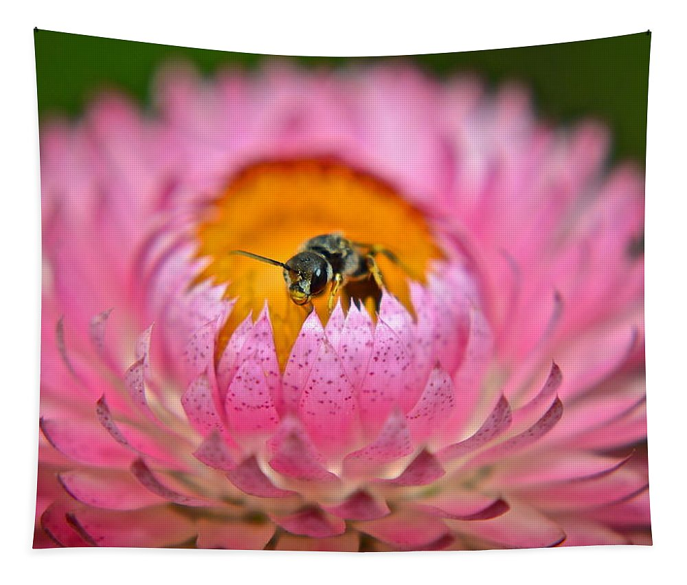 Bee Tapestry featuring the photograph Well Hello There by Frozen in Time Fine Art Photography