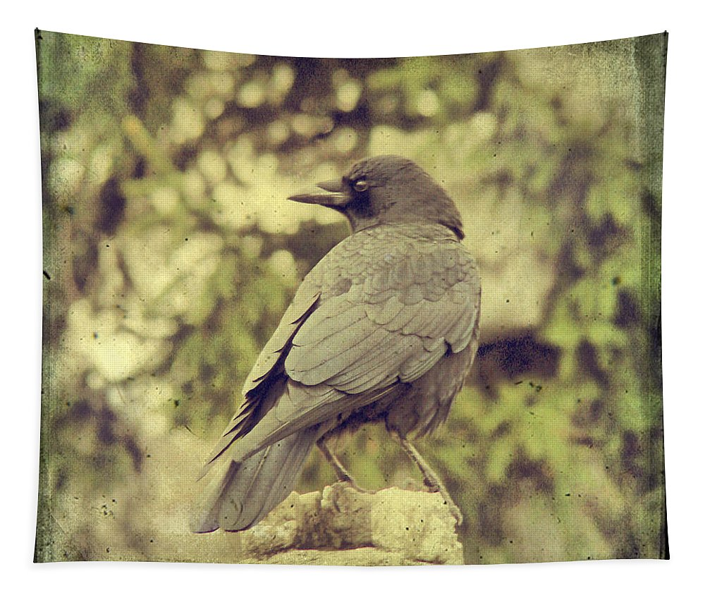 Crow In Front Of Pines Tapestry featuring the photograph Whatever Comes His Way by Gothicrow Images