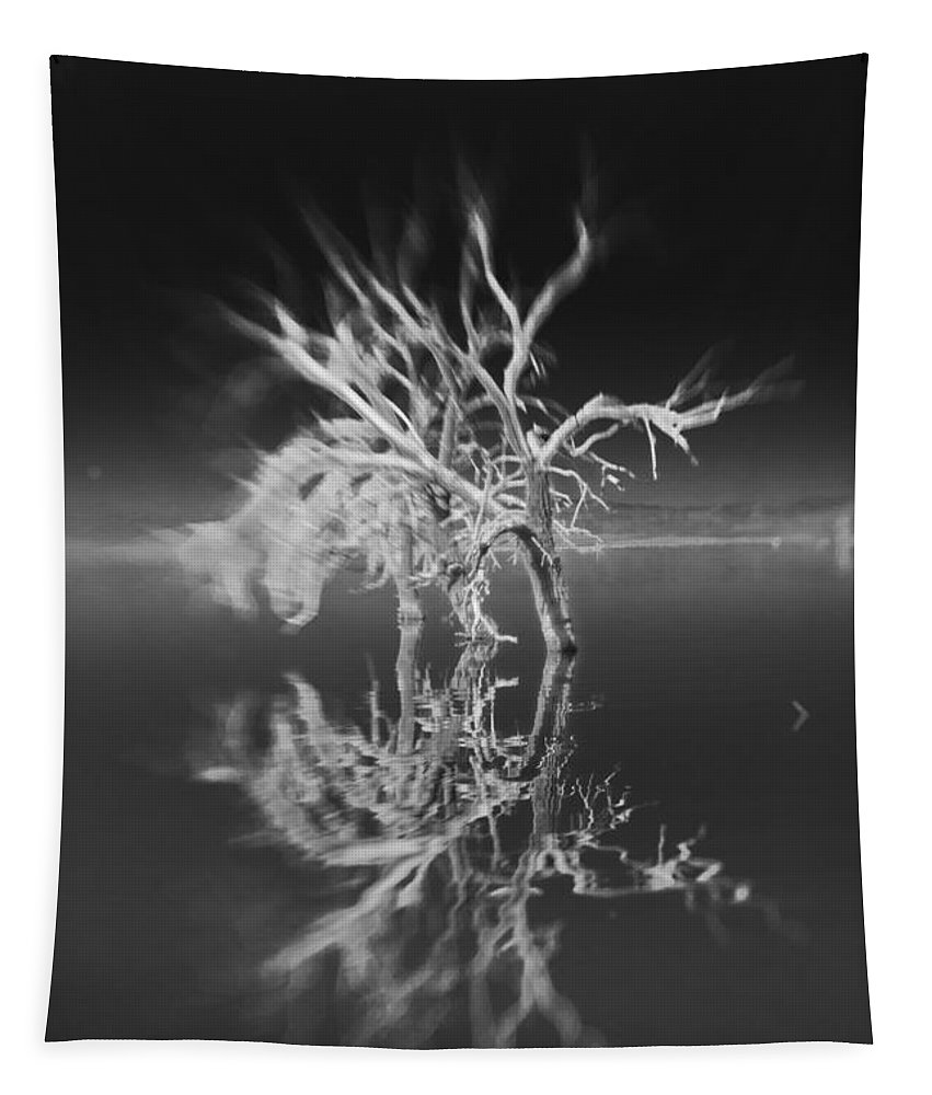 Reflection Tapestry featuring the photograph Whats Left Black And White by Scott Campbell