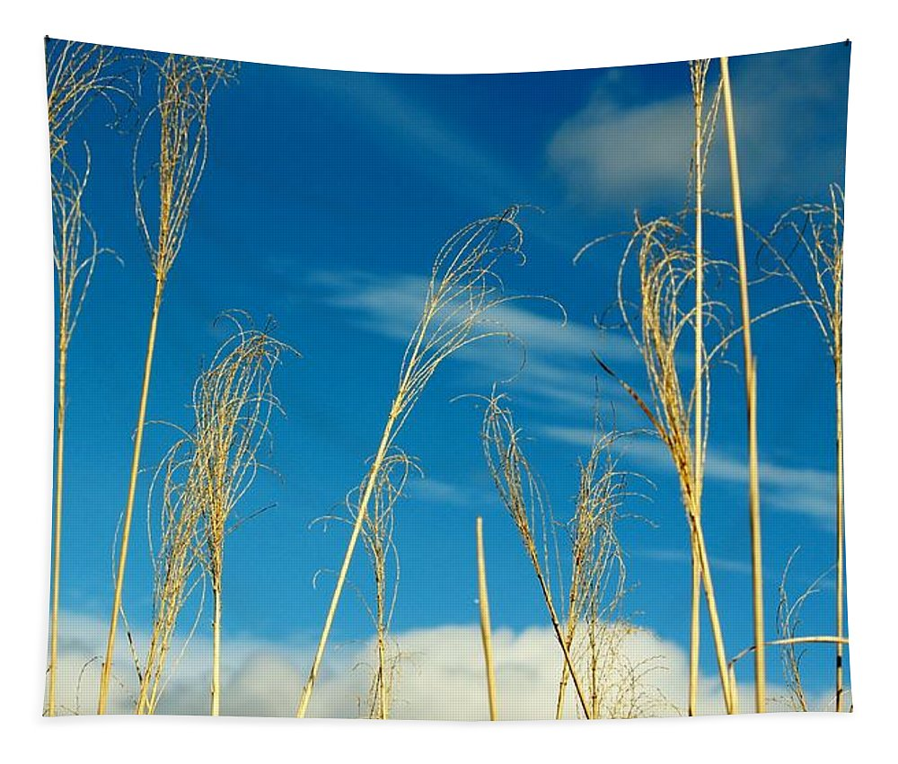 Plant Tapestry featuring the photograph Wheat In The Sky by Cynthia Guinn