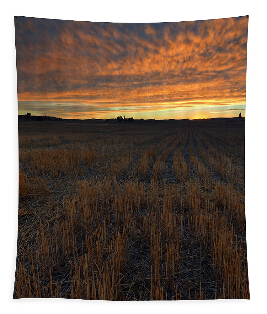 Wheat Stubble Tapestry featuring the photograph Wheat Stubble Sunset by Mike Dawson