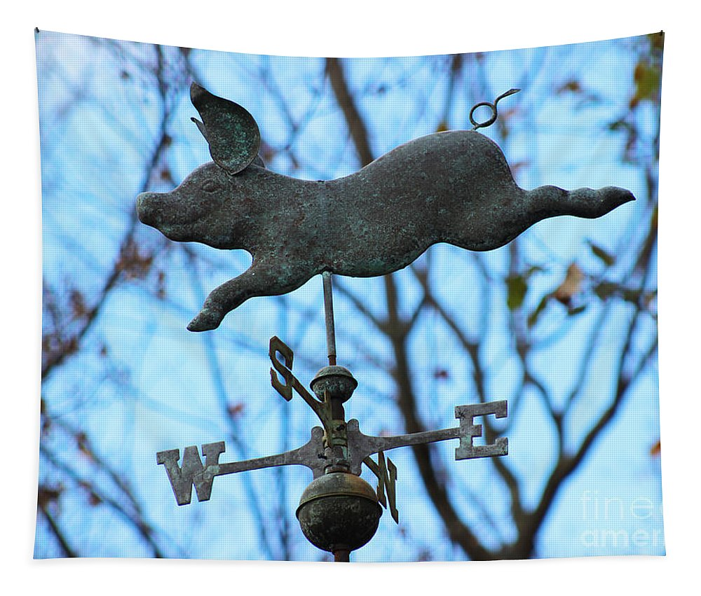 Pig Tapestry featuring the photograph When Pigs Fly by Karen Adams