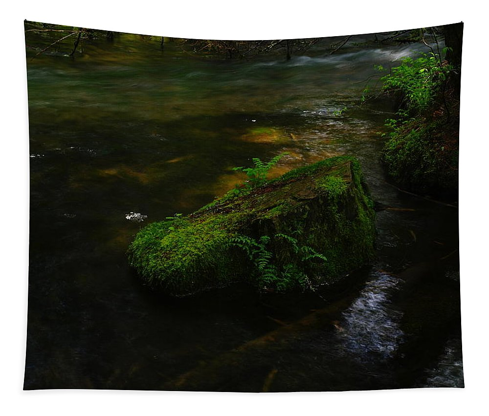Water Tapestry featuring the photograph Where The Water Is As Slow As Tranquility by Jeff Swan