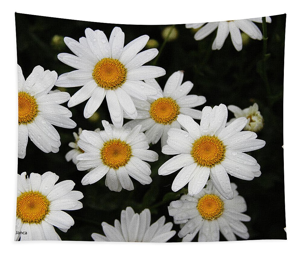 White Daisy's Tapestry featuring the digital art White Daisy's On The Rim by Tom Janca