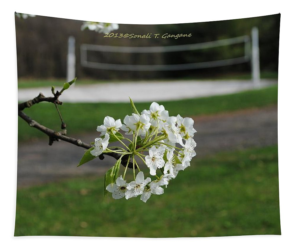 White Floral Tapestry featuring the photograph White Florescence by Sonali Gangane