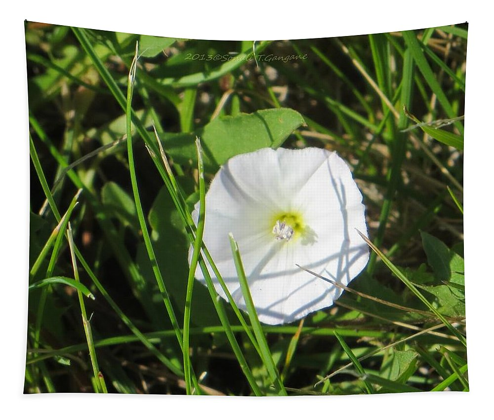 White Flower Tapestry featuring the photograph White Glow by Sonali Gangane