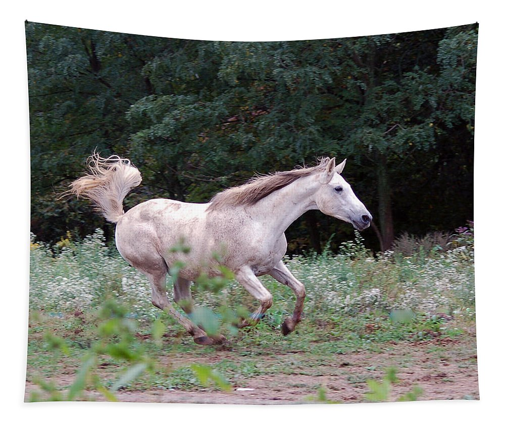 Horse Tapestry featuring the photograph White Horse by Annette Persinger