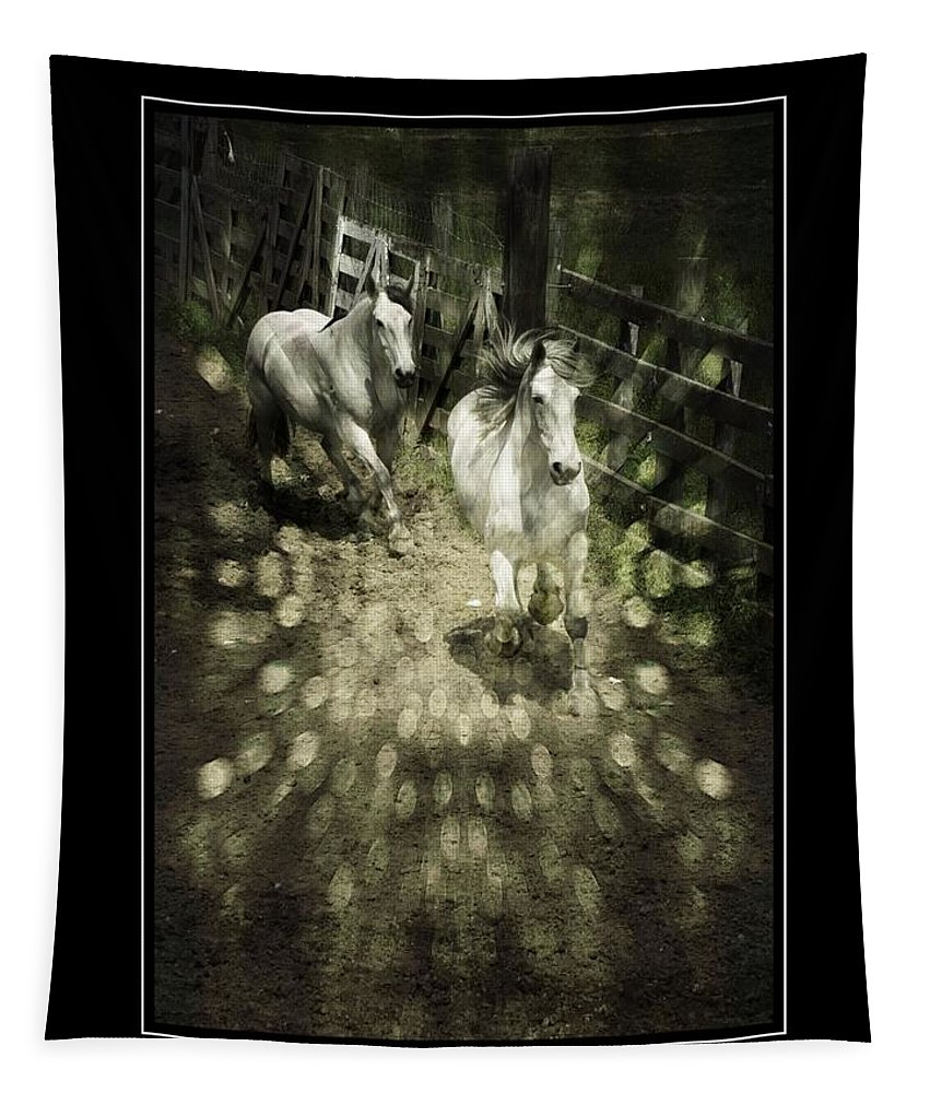 Horses Tapestry featuring the photograph White Into Flares by Alice Gipson