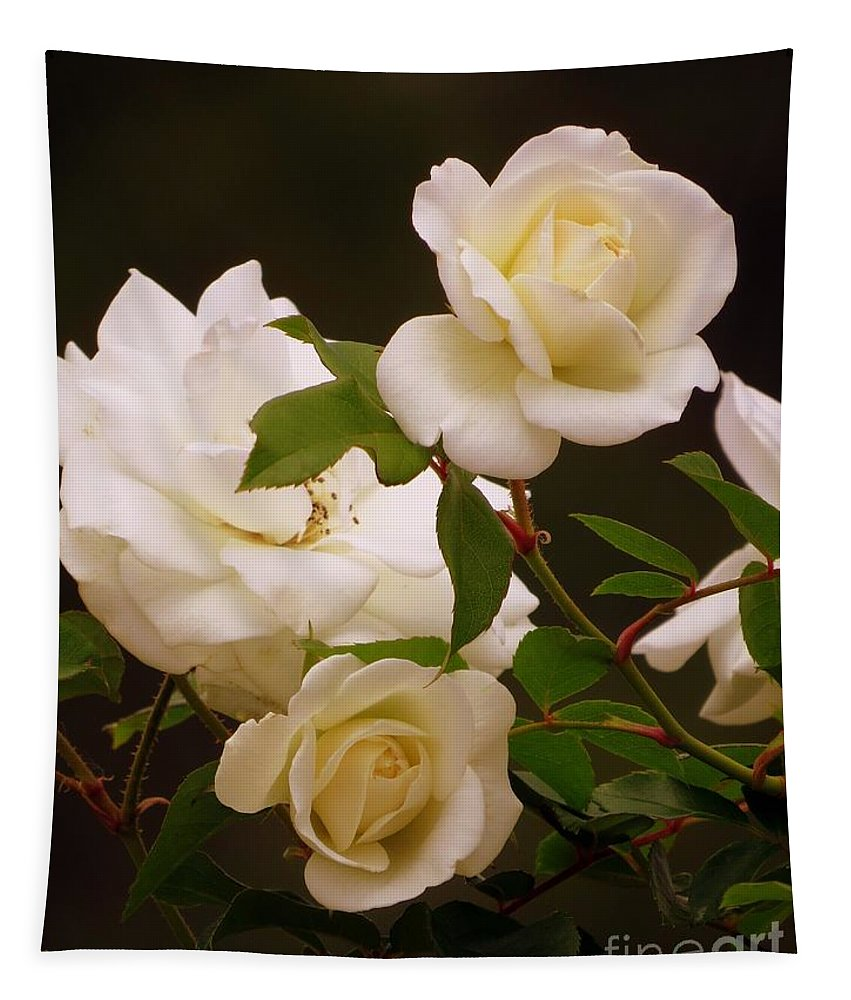 Roses Tapestry featuring the photograph White Roses by Zina Stromberg