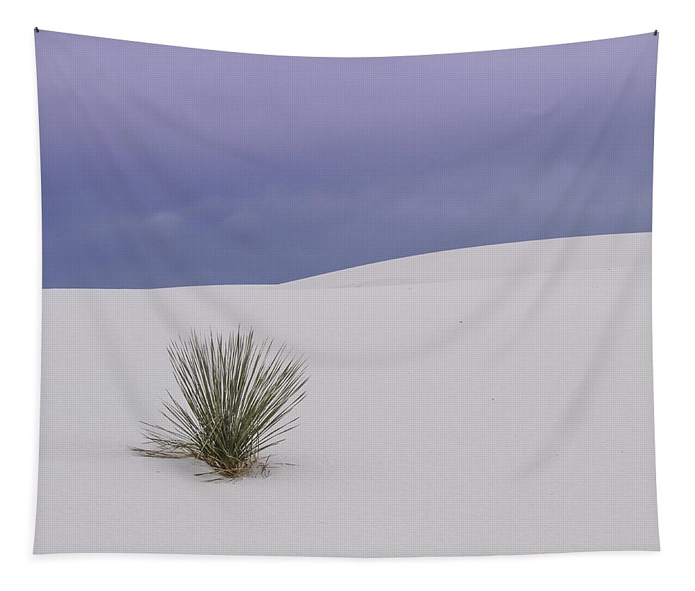 White Sandsjean Noren Tapestry featuring the photograph White Sands Lone Yucca by Jean Noren