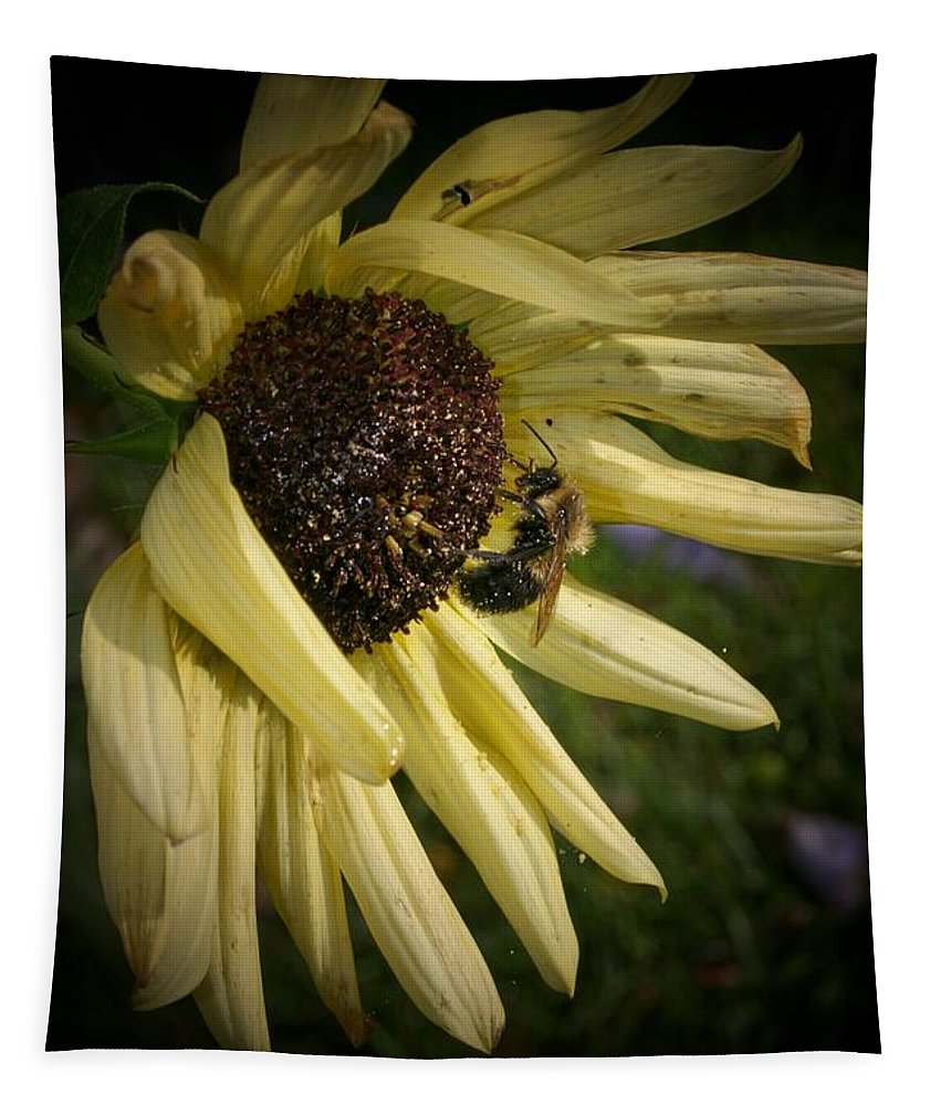 White Tapestry featuring the photograph White Sunflower And Bee by Susan McMenamin