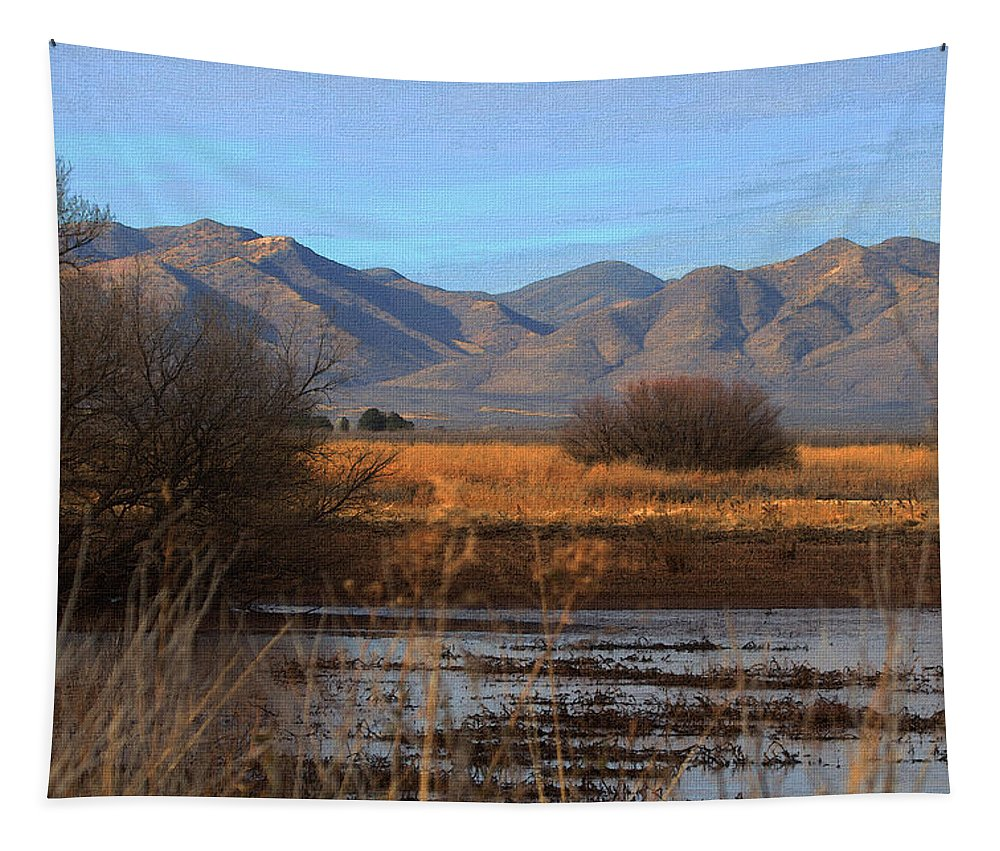 White Water Draw Preserve Tapestry featuring the photograph White Water Draw Preserve by Tom Janca