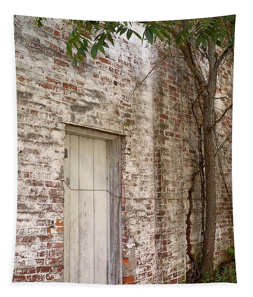Door Tapestry featuring the photograph Whitewash by Katie Beougher