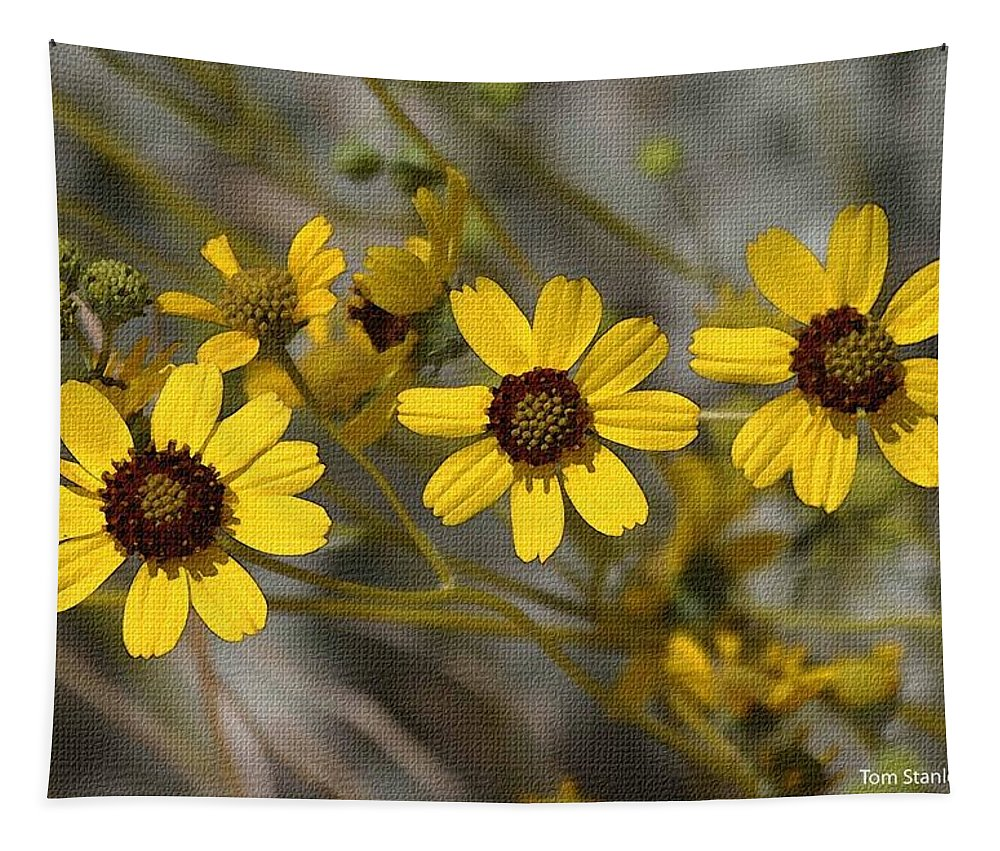 Wild Brittle Bush Flowers Tapestry featuring the photograph Wild Brittle Bush Flowers by Tom Janca