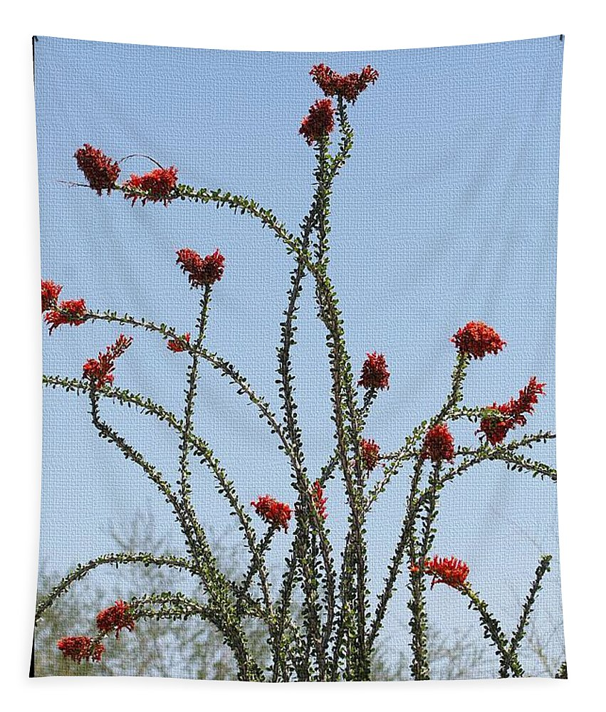 Wild Ocotillo Tapestry featuring the photograph Wild Ocotillo In Bloom by Tom Janca