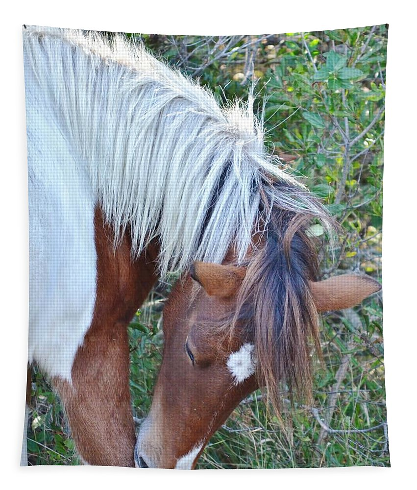 Wild Horses Tapestry featuring the photograph Wild Ponies Of Assateague 21 by Kim Bemis