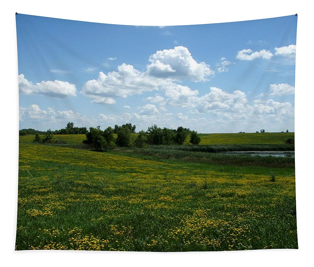 Peterson Nature Tapestry featuring the photograph Wild Prarie by James Peterson