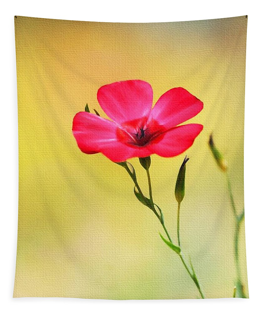 Wild Red Flower Tapestry featuring the photograph Wild Red Flower by Tom Janca
