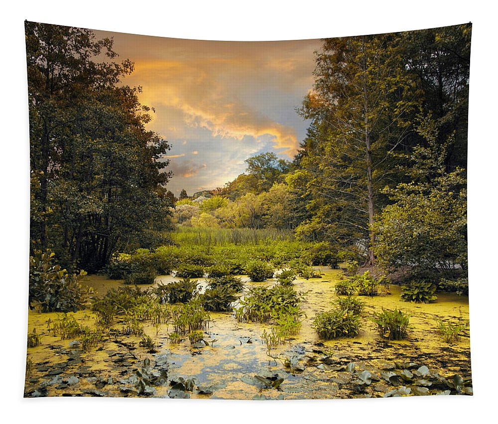 Nature Tapestry featuring the photograph Wild Wetlands by Jessica Jenney