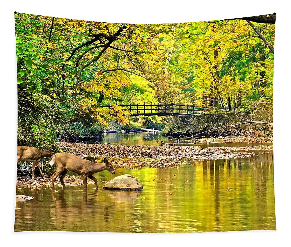 Wildlife Tapestry featuring the photograph Wildlifes Thirst by Frozen in Time Fine Art Photography
