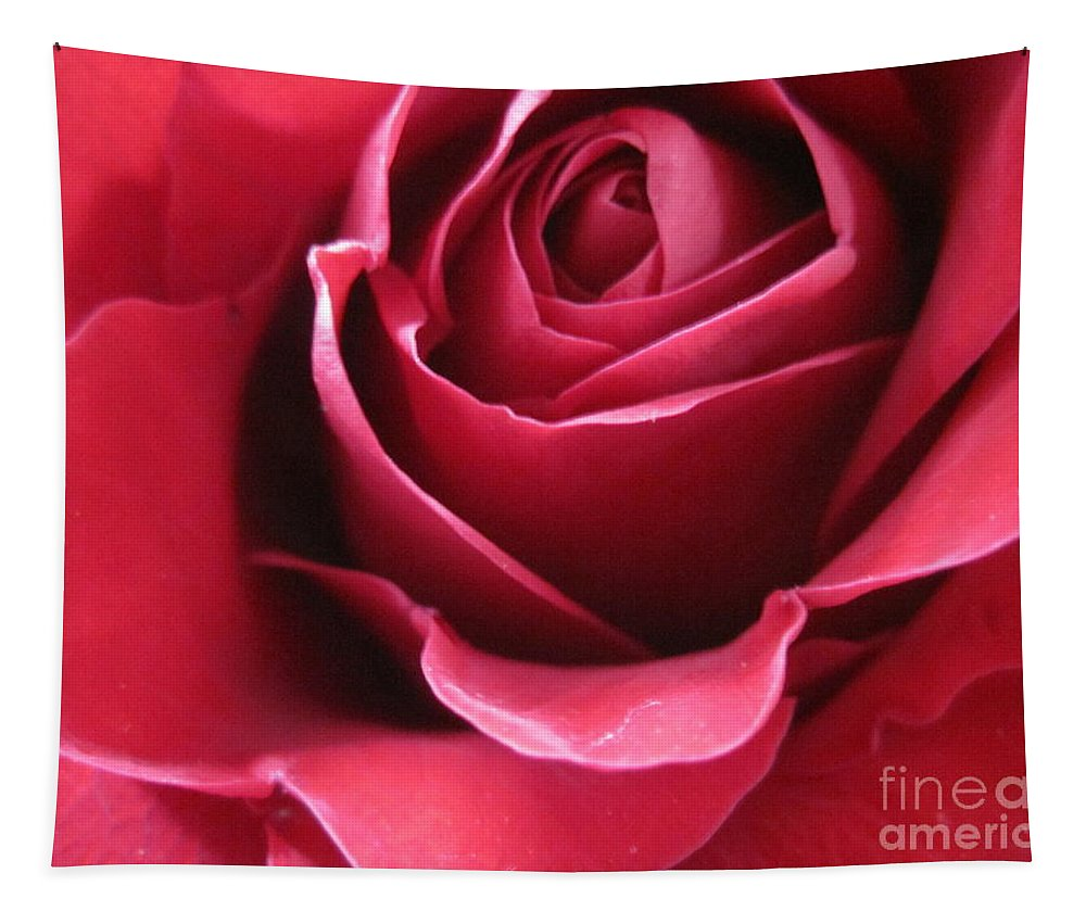 Floral Tapestry featuring the photograph Wine Rose 6 by Tara Shalton