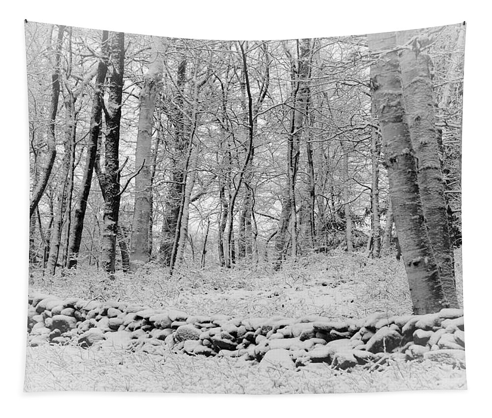 Landscape Tapestry featuring the photograph Winter And The Wall by Mike Martin