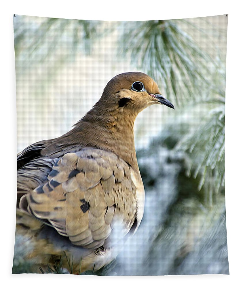 Dove Tapestry featuring the photograph Winter Bird Mourning Dove by Christina Rollo