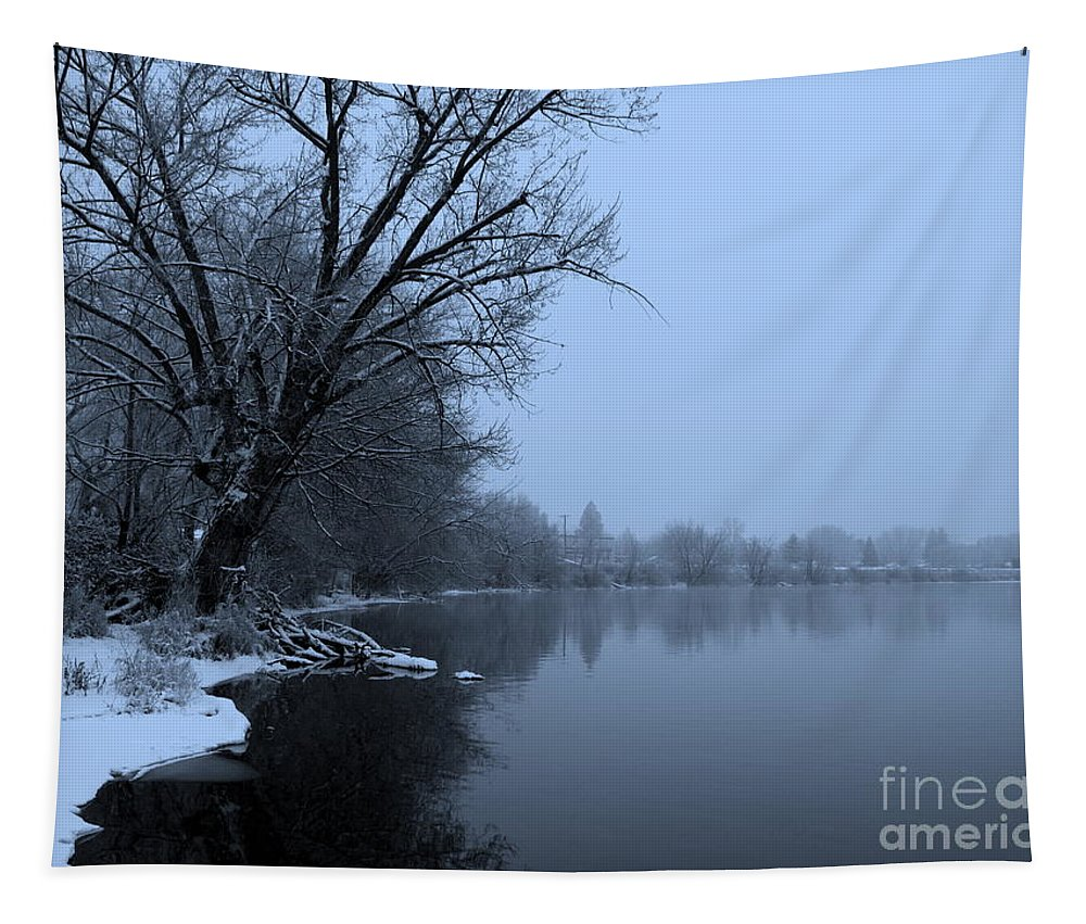 Blue Tapestry featuring the photograph Winter Blues by Carol Groenen