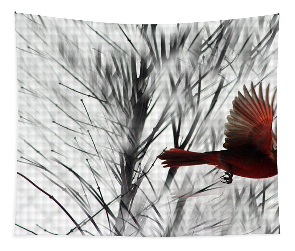 Cardinal Tapestry featuring the photograph Winter Cardinal by Heather Applegate