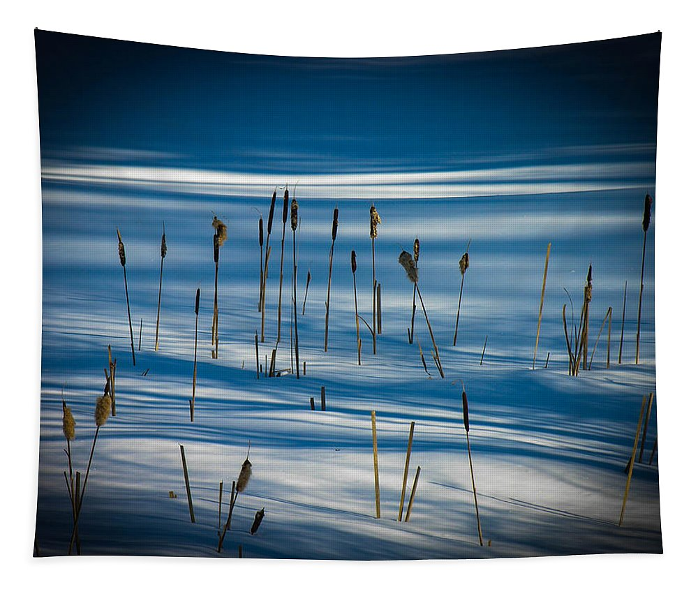 Winter Tapestry featuring the photograph Winter Cattails by Sherman Perry