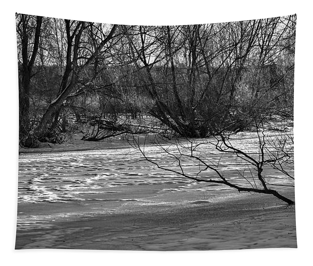 Black And White Tapestry featuring the photograph winter day BW-Black and white presentation of Snow on a frozen creek south by Leif Sohlman
