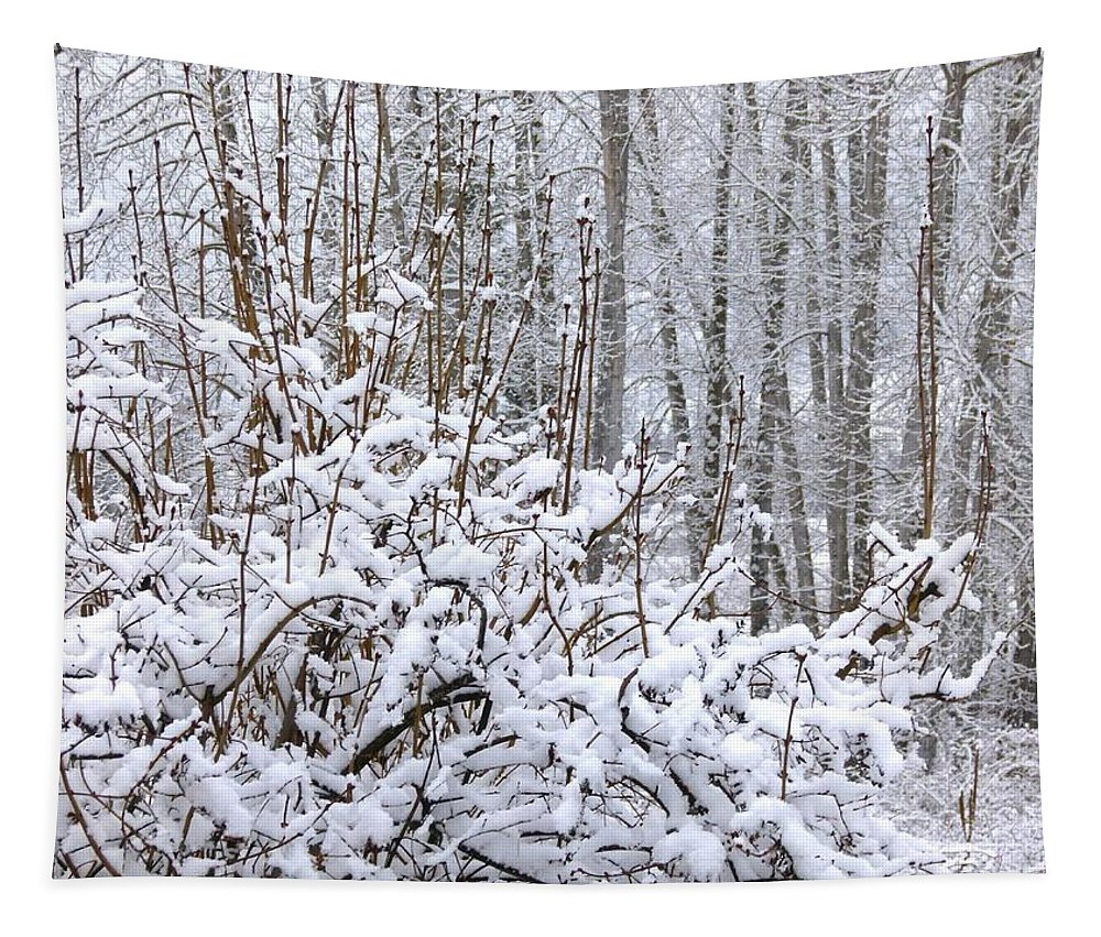 Winter Haven 2 Tapestry featuring the photograph Winter Haven 2 by Will Borden